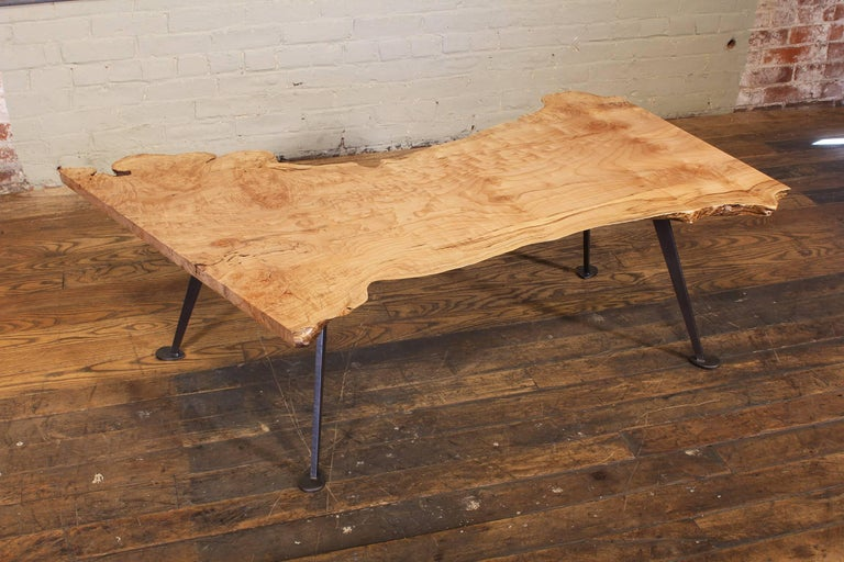 Coffee Table Free-Form Live Edge Maple Burl with Steel Legs For Sale 7