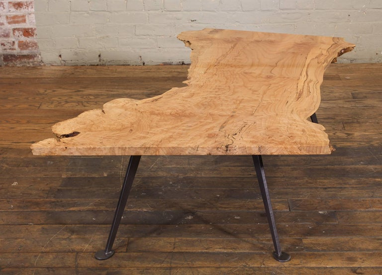 Coffee Table Free-Form Live Edge Maple Burl with Steel Legs For Sale 9