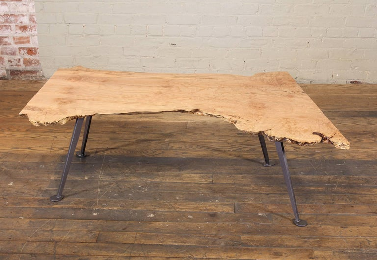 Coffee Table Free-Form Live Edge Maple Burl with Steel Legs For Sale 2