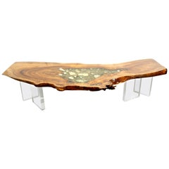 Coffee Table or Console Table in English Elm with Crystals, Gemstones and Lucite