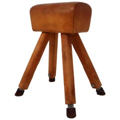 Cognac Leather Covered Beechwood Vaulting Horse, 1960s
