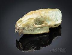 """Mink Talisman Skull"" Bronze Sculpture"