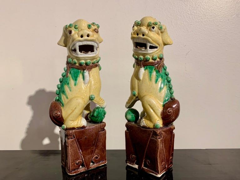 Collection of 16 Chinese Yellow Glazed Foo Dogs, Early 20th Century, China For Sale 5