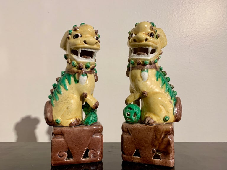 Collection of 16 Chinese Yellow Glazed Foo Dogs, Early 20th Century, China For Sale 6