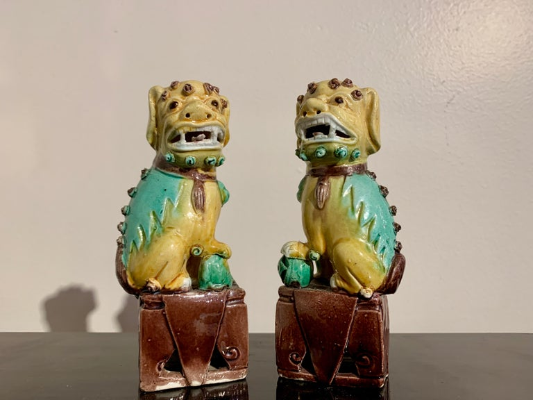 Collection of 16 Chinese Yellow Glazed Foo Dogs, Early 20th Century, China For Sale 7