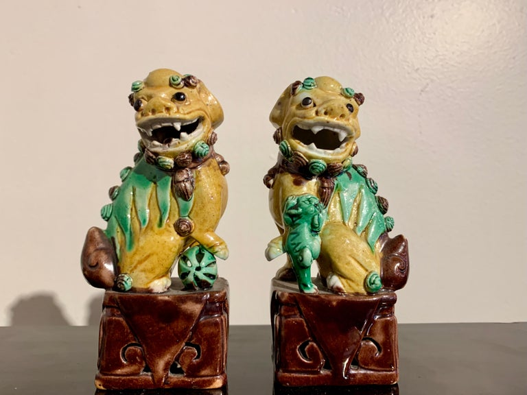 Collection of 16 Chinese Yellow Glazed Foo Dogs, Early 20th Century, China For Sale 8