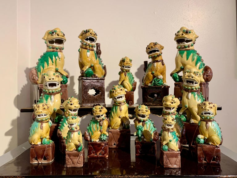 A fabulous and impressive collection of sixteen (16) ceramic Chinese export foo dogs (also known as foo lions), glazed in yellow, green and aubergine, late 19th and early 20th century, circa 1890's - 1930's, China.  This incredible collection of