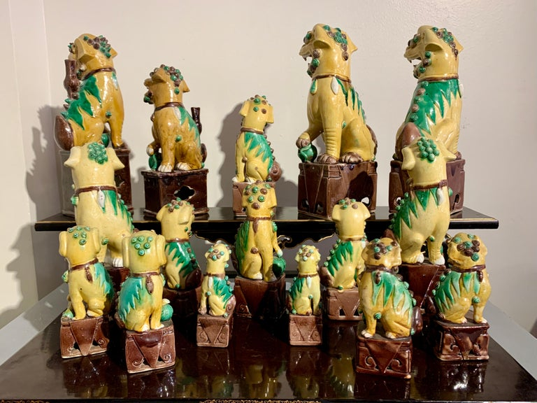Collection of 16 Chinese Yellow Glazed Foo Dogs, Early 20th Century, China In Good Condition For Sale In Austin, TX