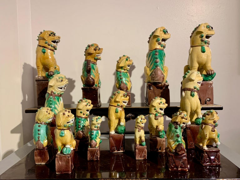 Ceramic Collection of 16 Chinese Yellow Glazed Foo Dogs, Early 20th Century, China For Sale