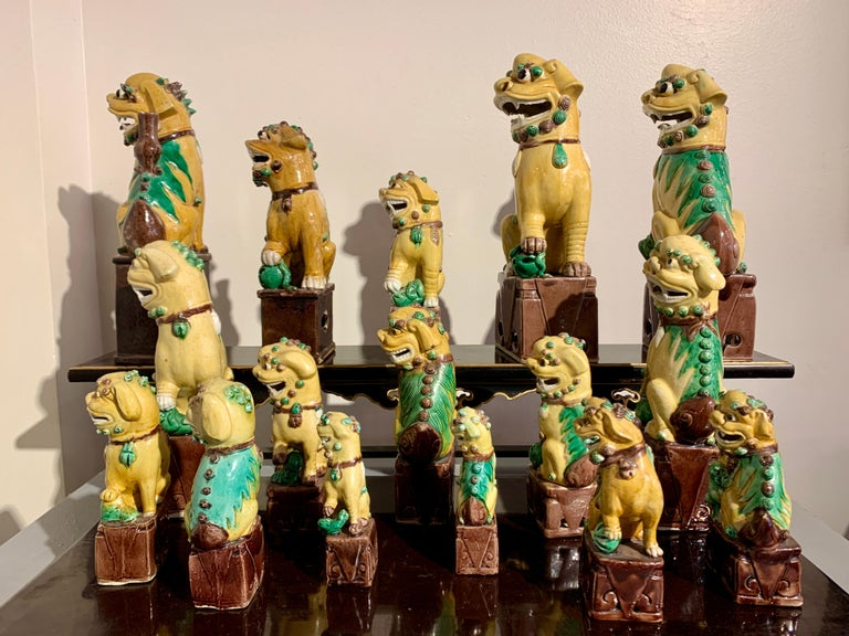 Collection of 16 Chinese Yellow Glazed Foo Dogs, Early 20th Century, China For Sale 1
