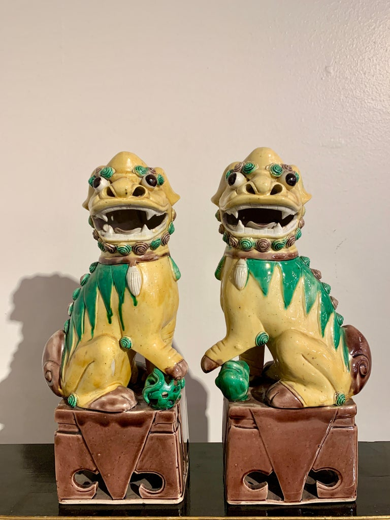 Collection of 16 Chinese Yellow Glazed Foo Dogs, Early 20th Century, China For Sale 3