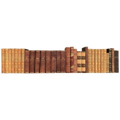 Collection of 19 European 19th Century Leather-Bound Books