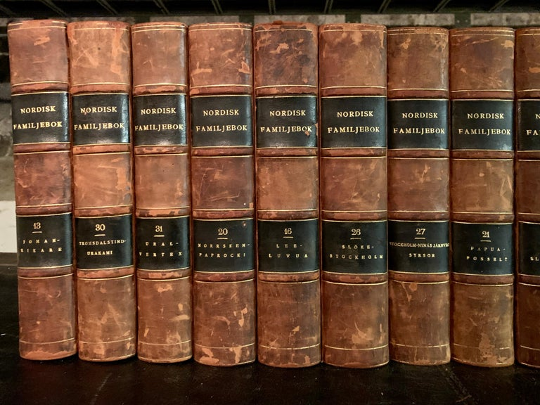 Swedish Collection of 19 Scandinavian Antique Leather-Bound Books For Sale