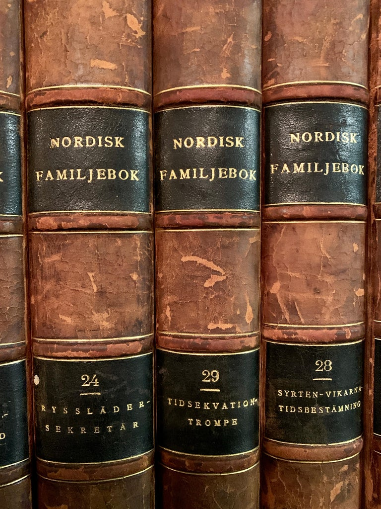 20th Century Collection of 19 Scandinavian Antique Leather-Bound Books For Sale