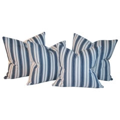 Collection of 19thc Blue & White Ticking Pillows