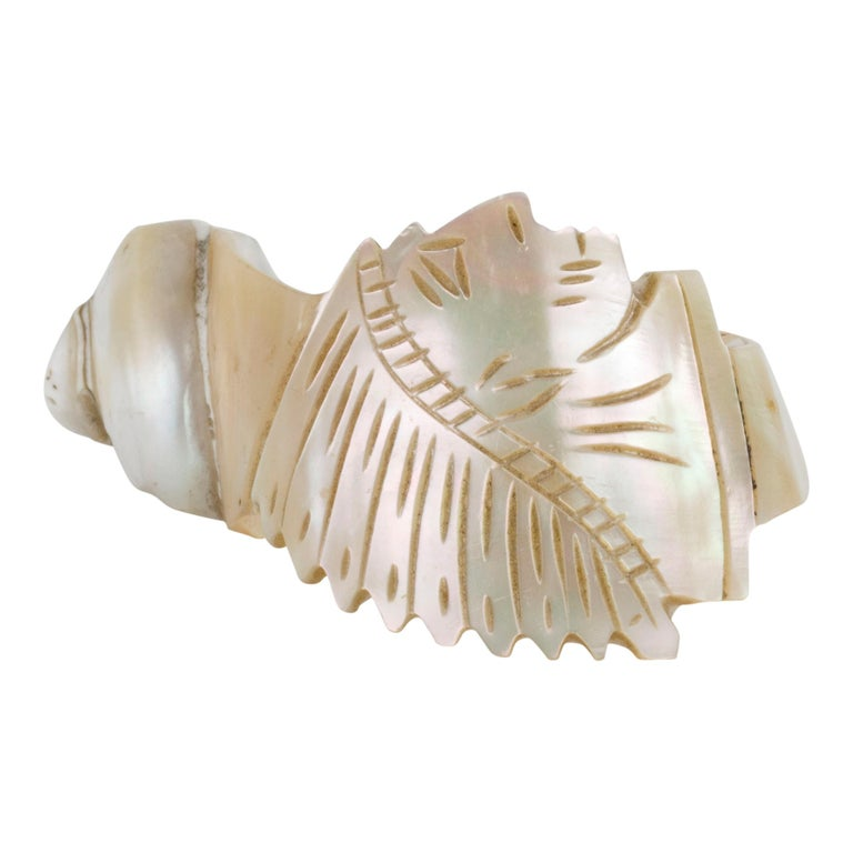 Collection of 4 1890s Carved Conch Napkin Rings In Good Condition For Sale In Coeur d Alene, ID