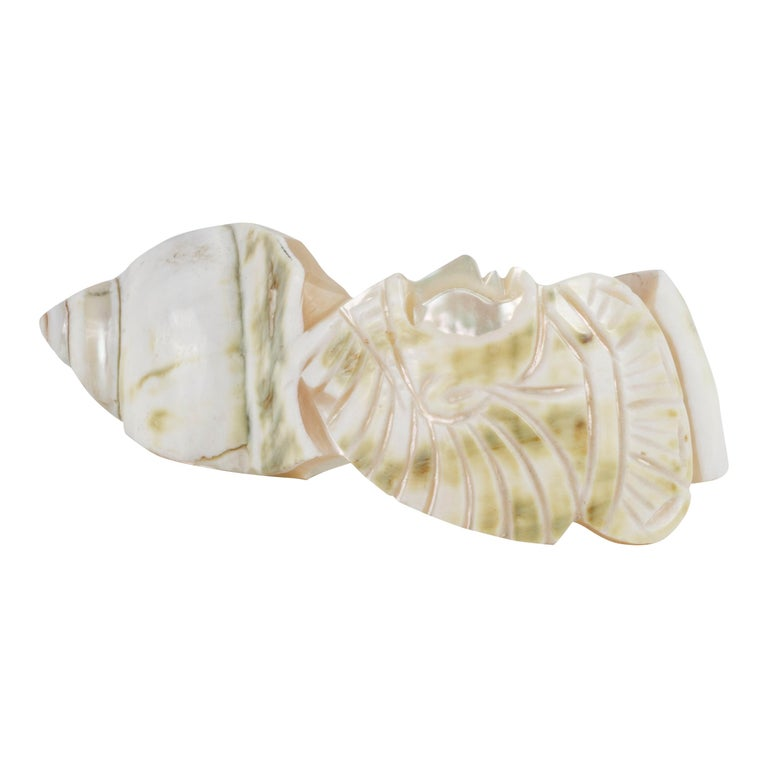 Women's or Men's Collection of 4 1890s Carved Conch Napkin Rings For Sale