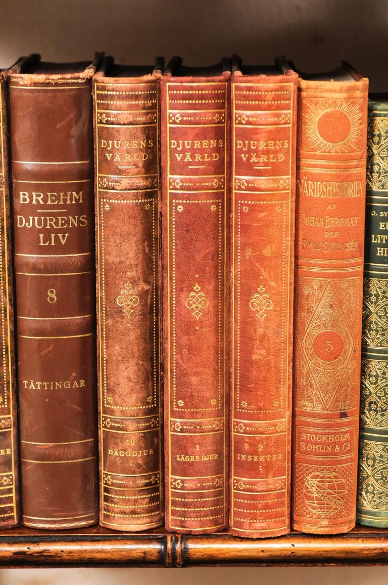 Collection of 65 Antique Swedish Leather-Bound Books from the 1920s For Sale 2
