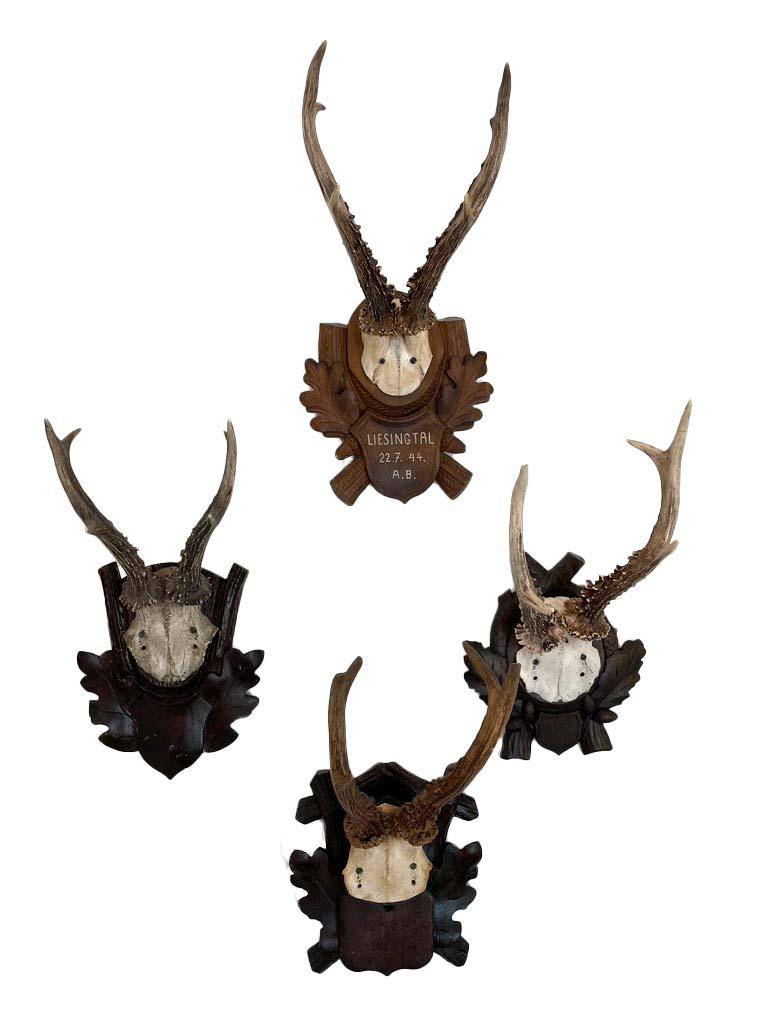 """Beautiful antique roe deer antler mounts on carved wood plaques. Some with dates. Collection of 8, priced separately. Ask if you have an interest in a specific piece.   Approximate dimensions:  base 7""""  antler to bottom of base 13""""  depth 6"""