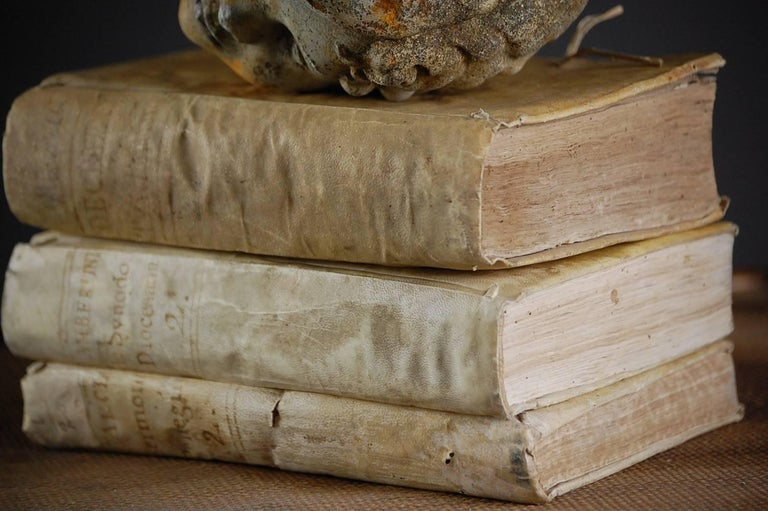 Collection of Antique Velum Books For Sale 1