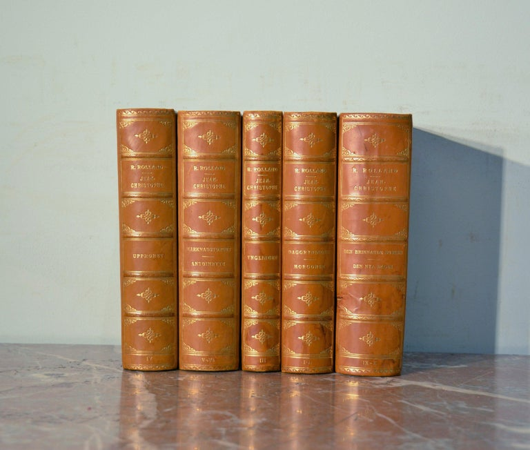 Collection of Five Leather Bound Books, Series 129 For Sale 2