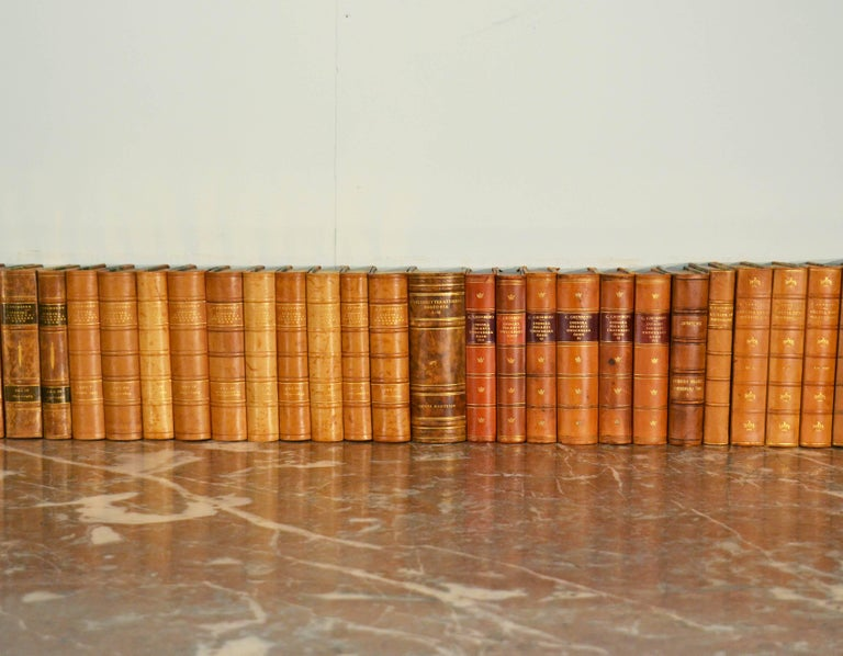 Collection of Leather Bound Books, Series 109 For Sale 1