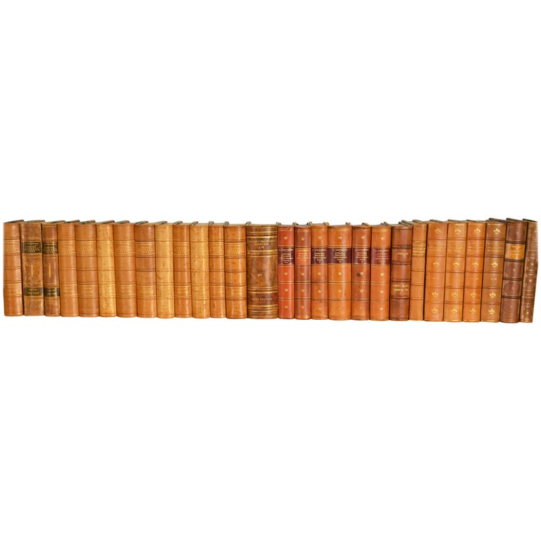 Collection of Leather Bound Books, Series 109 For Sale