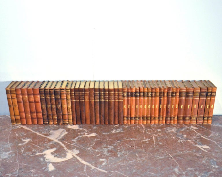 Collection of Leather Bound Books, Series 110 For Sale 1
