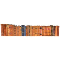 Collection of Leather Bound Books, Series 113