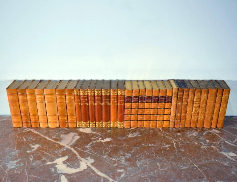 Swedish Collection of Leather Bound Books, Series 117 For Sale