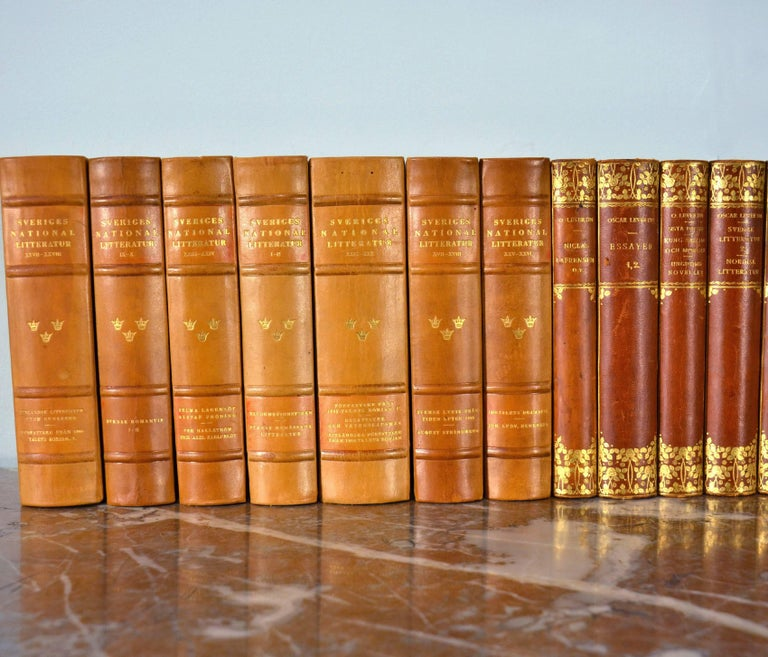 Collection of Leather Bound Books, Series 117 For Sale 1