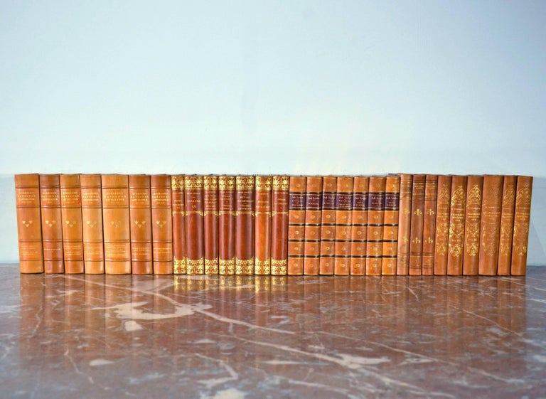Collection of Leather Bound Books, Series 117 For Sale 2