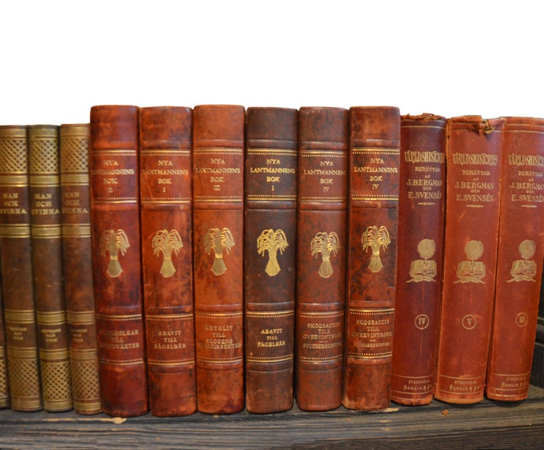 20th Century Collection of Leather Bound Books, Series 206 For Sale