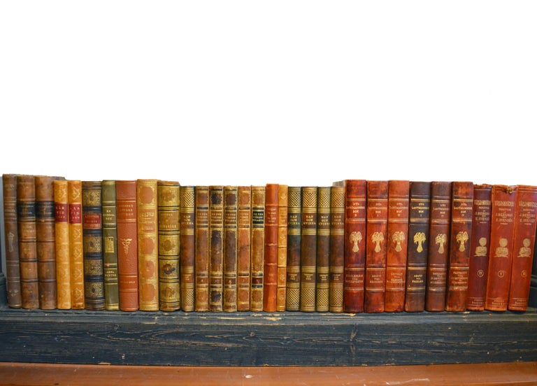 Collection of Leather Bound Books, Series 206 For Sale 1