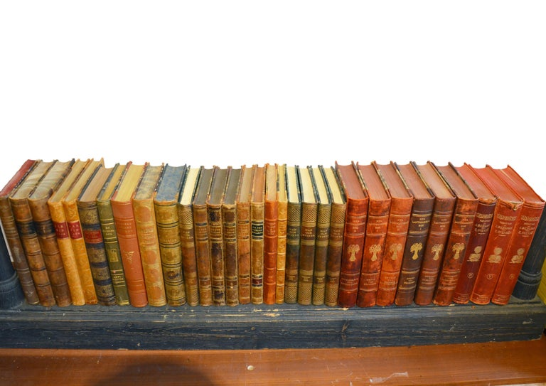 Collection of Leather Bound Books, Series 206 For Sale 2