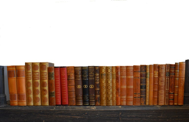 20th Century Collection of Leather Bound Books, Series 207 For Sale