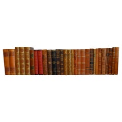 Collection of Leather Bound Books, Series 207