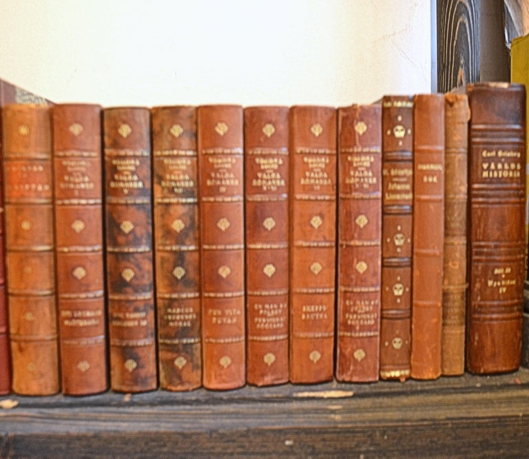 Collection of Leather Bound Books, Series 208 In Good Condition For Sale In London, GB
