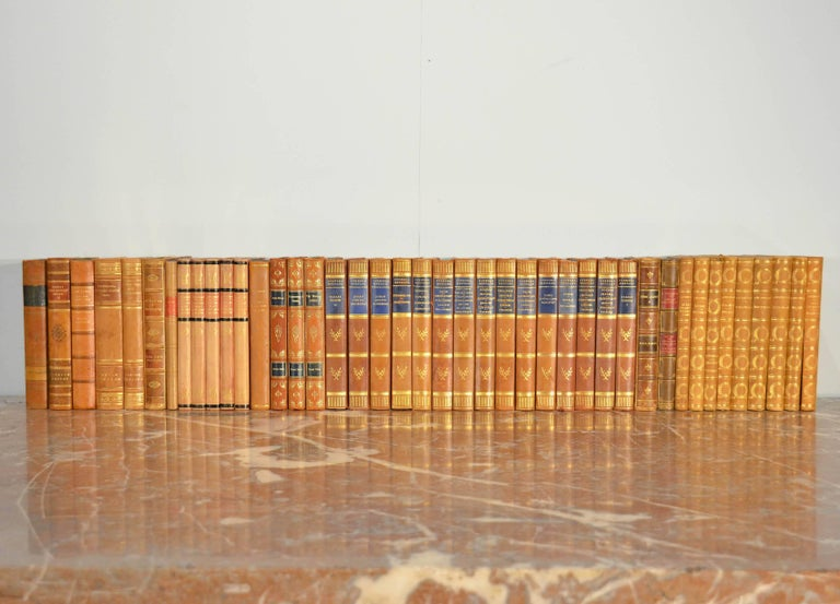 Collection of Leather Bound Books, Series 107 For Sale 1