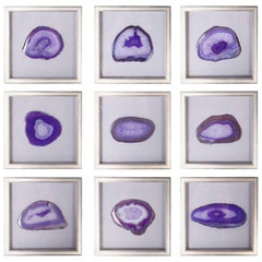 Collection of Nine Framed Agate Specimens