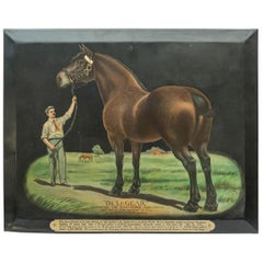 Colorful Advertising Chromolithograph Tin Sign with Famous Horse