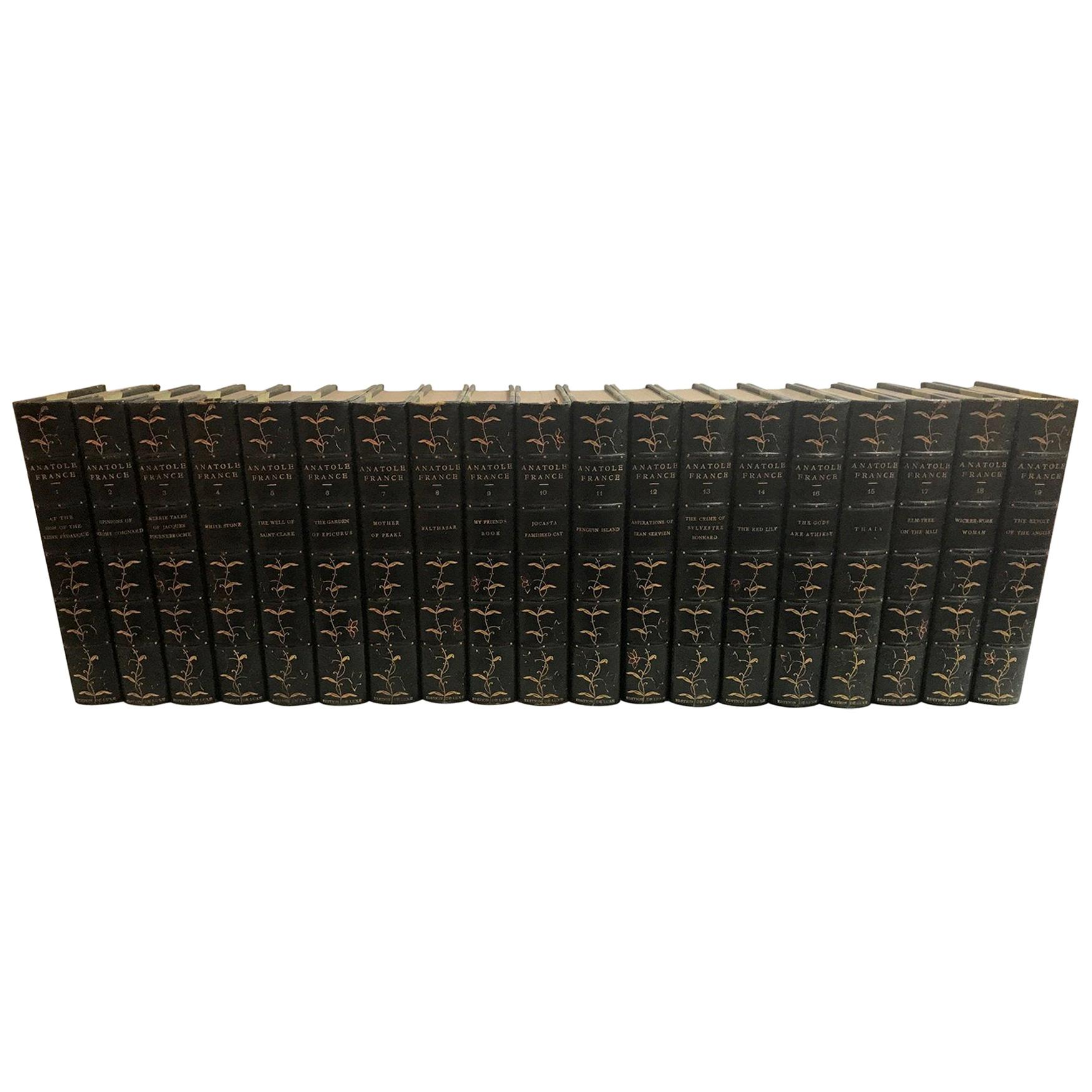 Complete Set of 19 Volumes of Novels and Stories of Anatole, France