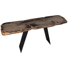 Console Table, Natural Organic Shape, Petrified Wood with Metal Base