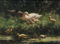 A Family Group of Ducks on a Riverbank 19th / 20th Century by Constant Artz