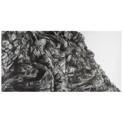 Contemporary Artwork by Tom Dedoncker 'Rock'