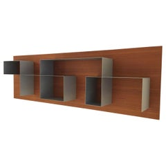Contemporary Asymmetrical Bookcase with Teak Wall Panel and Aluminum Shelving