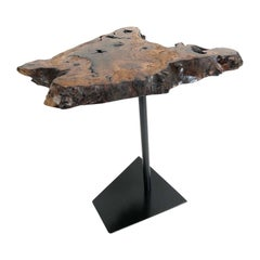Contemporary Black Walnut Live Edge Small Side Table with a Black Steel Base