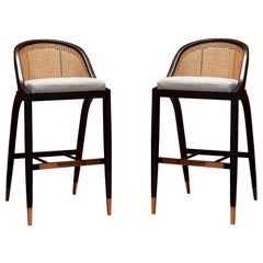 Set of 2 Contemporary Cane Back Counter Stool in Ebony