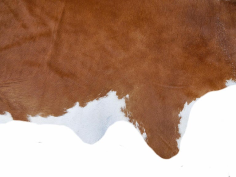 Contemporary Cowhide Rug Light Brown Caramel Beige For Sale 4