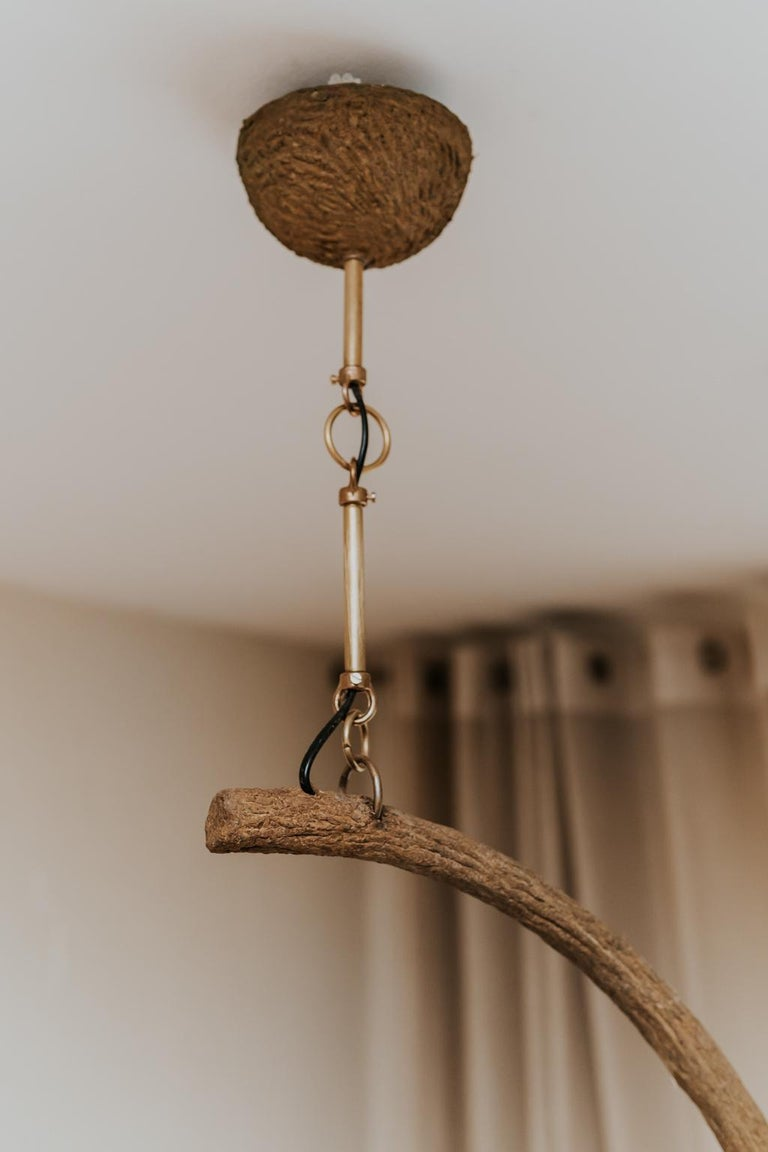 Contemporary Crescent Moon Branches and Leaves Lamp or Chandelier In New Condition For Sale In Brecht, BE